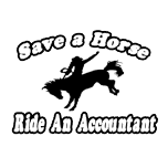 Funny shirts for accountants, naughty accountant shirts and gifts